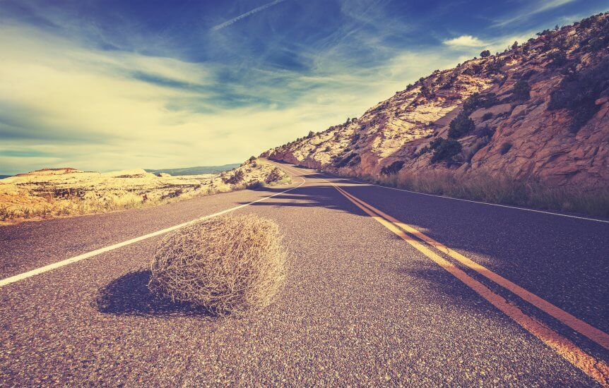 tumbleweed no blog traffic