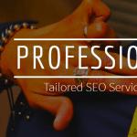 Professional SEO Service
